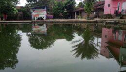 rumah-dijual-di-cianjur-murah-tanah-luas-ada-kolam-ikan-12